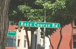 Race Course Road (Generic road name)